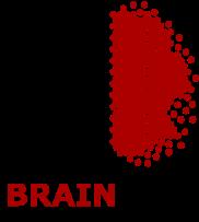 BrainBox_test5